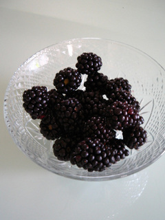 blackberry4.jpg